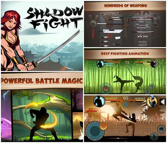 app-jogo-shadow-fight-2