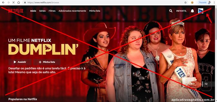 Como Cancelar Netflix?